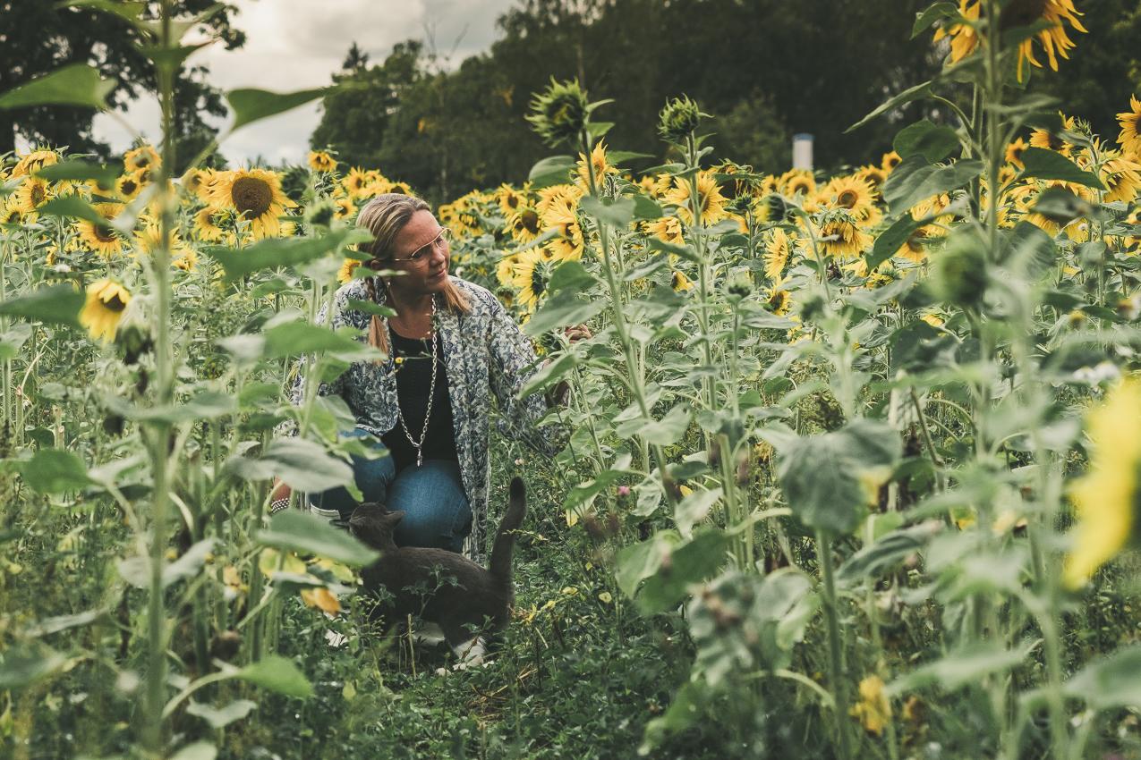 160819_hus30_fotograf_ulrica_hallen_fujifilm_solrosor_xpro2_stillife_lifestyle_sunflowers_autumn-9185