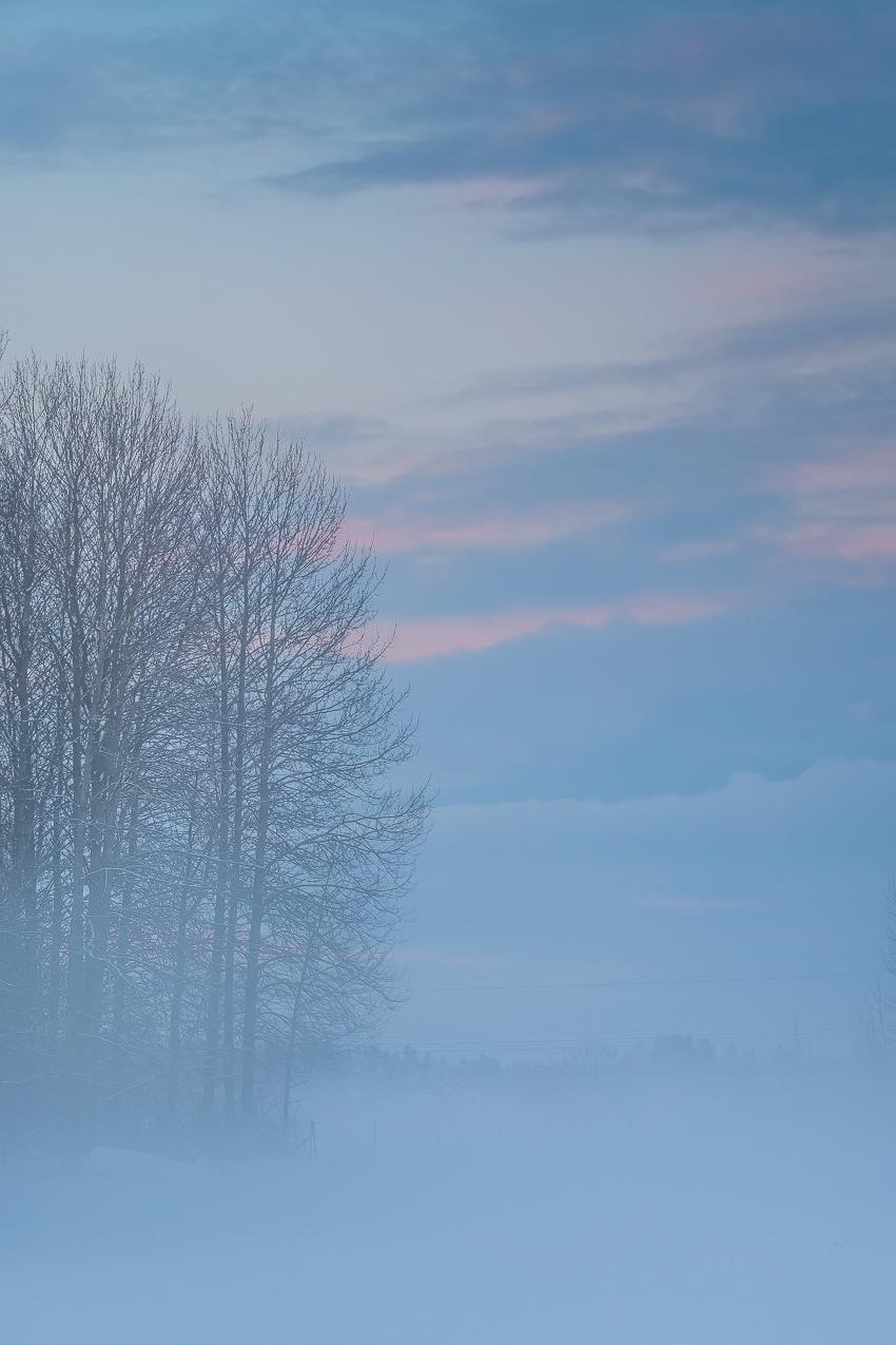 161110_hus30_fotograf_ulrica_hallen_fujifilm_vinter_snoflinga_naturfoto_advent-3343