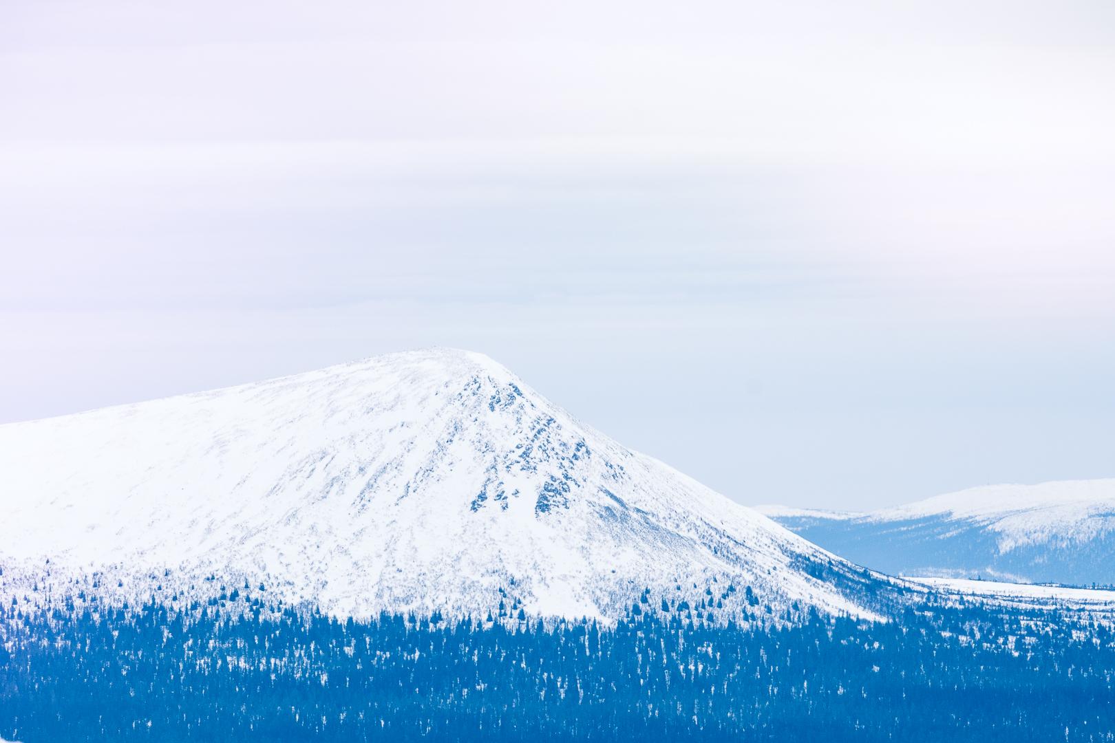 Lofsdalen våffelstugan mackmyra skybar karins sportbod