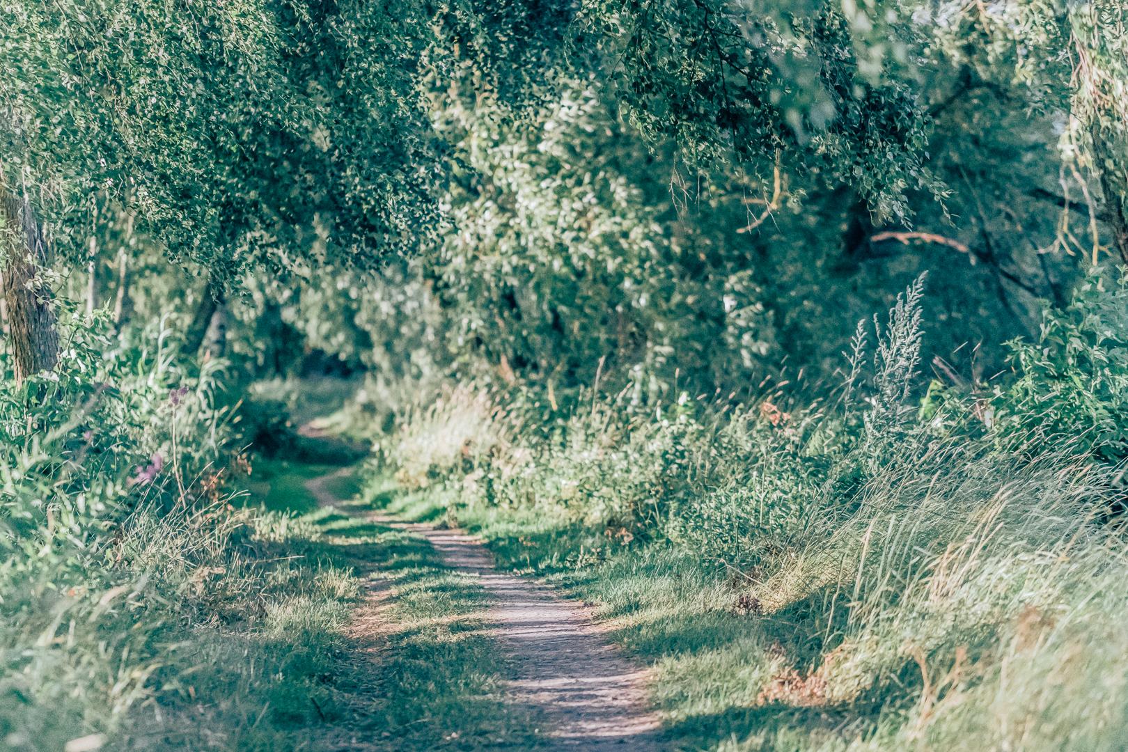 En promenad runt Dyarna i Enköping. Motiverat av Vandringsbloggen samt Kvinnligaäventyrare