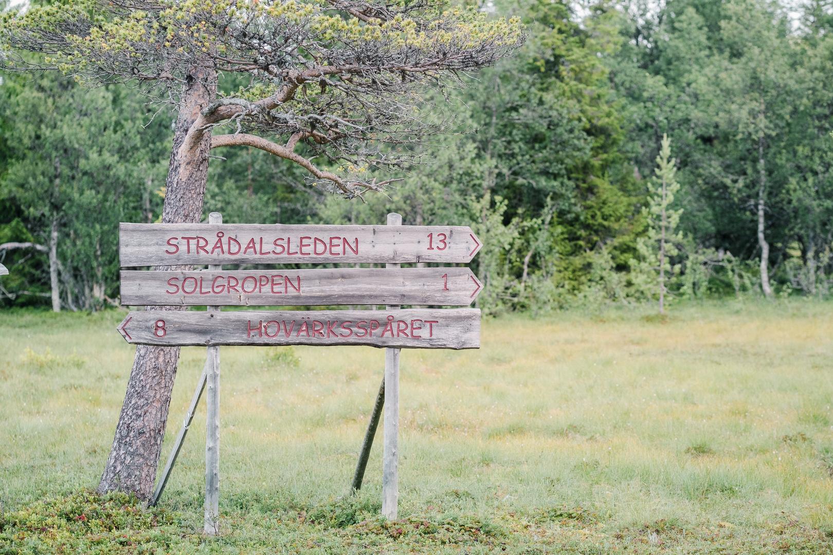 Vandra i Lofsdalen på Hovärken