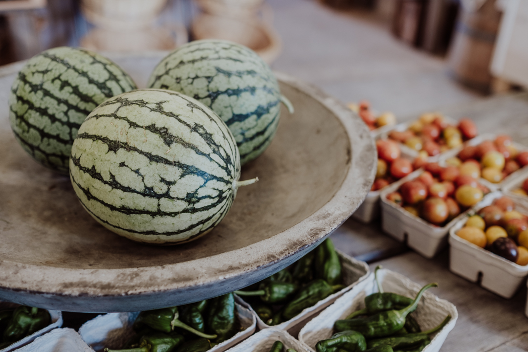 Närodlade meloner och grönsaker på Lilla Bjers, Svenska resebloggar, Nordic TB, Visit Gotland, Fujifilm Nordic