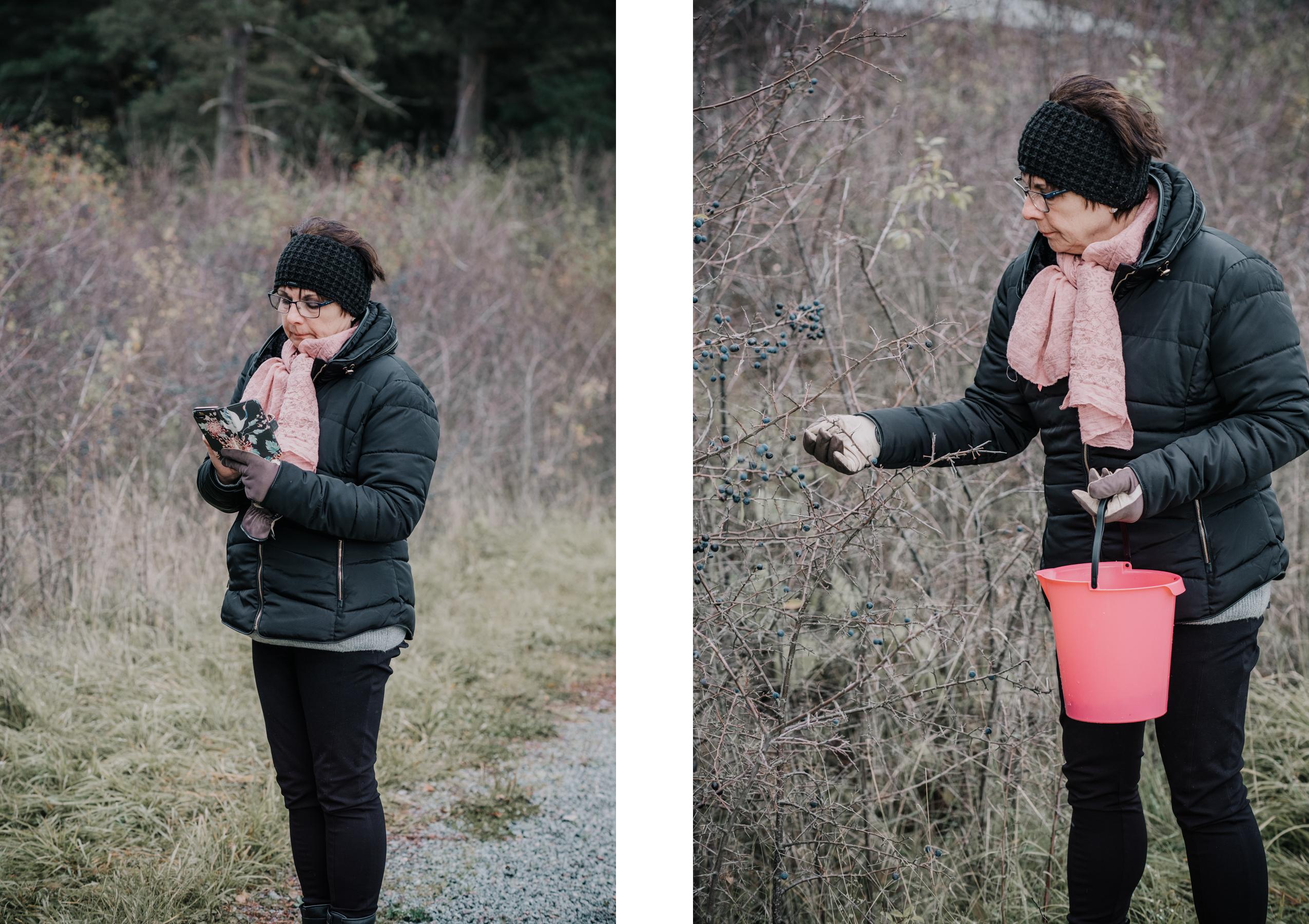 Prova på att göra slånbärslikör till julfirandet : Från tekopp till bergstopp